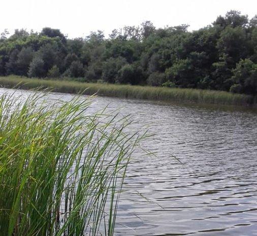 Річка Синюха - погляд Юлії Чабан